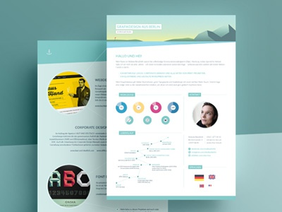 Private Resume infographic design job application job resume cv curriculum vitae