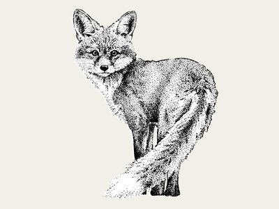 Dotwork Fox creativemarket forest vector ink blackwork dotwork animal fox illustration