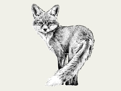 Dotwork Fox