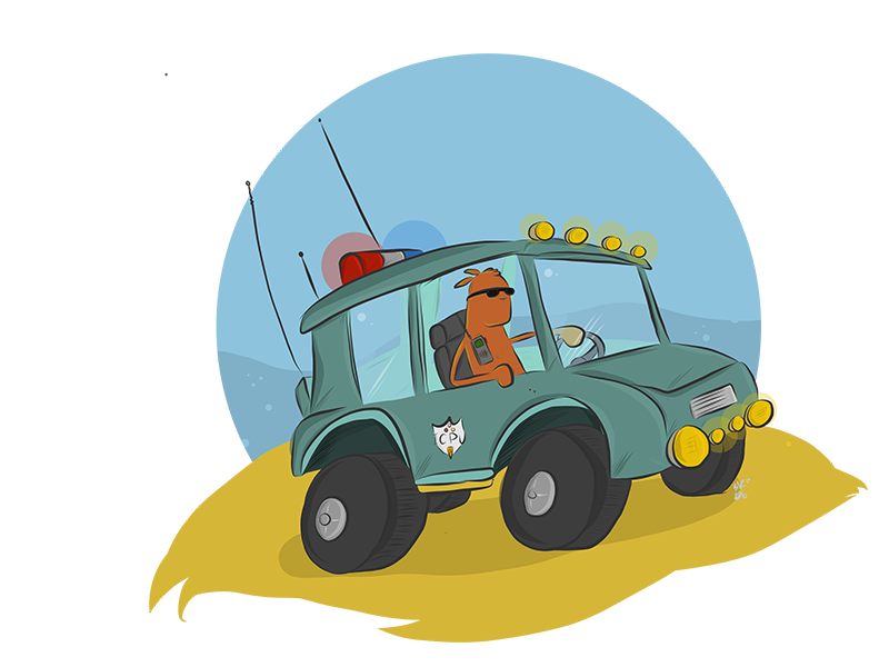A squirrel in a beach buggy... buggy picture book police beach squirrel
