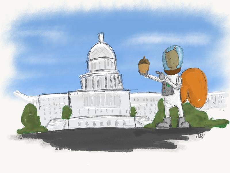 Captain Nuht wip illustration nuts acorn astronut astronaut politics congress kidlit picture book squirrel