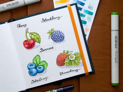 Berries Illustration / Copic Markers sketch markers illustration berries copic copics
