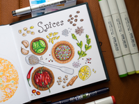 Spices Illustration / Copic Markers