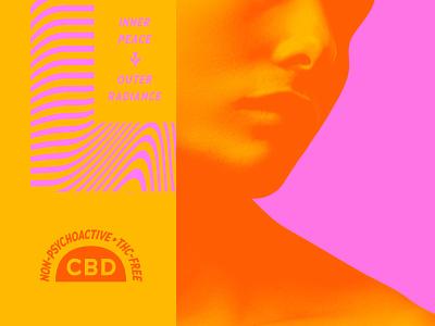 Sonoma Specific - Elements identity packaging logo stout typography branding san francisco illustration