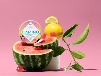 Camino Tins Flavorz camino kiva cannabis cannabis packaging packaging typography branding illustration stout san francisco
