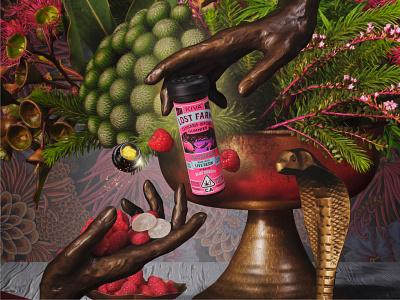 Lost Farm Gummies by Kiva cannabis lost farm kiva edibles identity packaging stout branding san francisco illustration