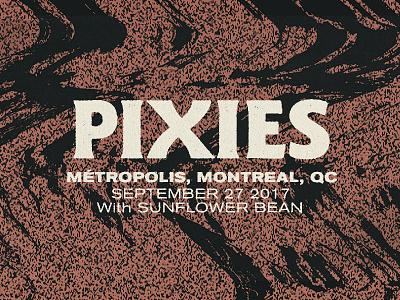 Pixies Type Lockup noise texture warp type gig poster