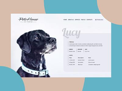 Profile profile vet dog website dailyuichallenge dailyui