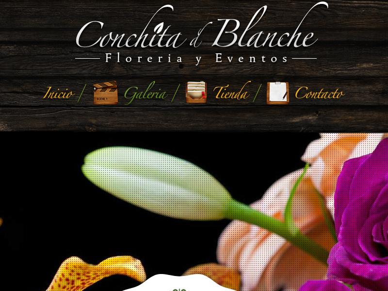 Conchita d' Blanche woocommerce wordpress e-commerce seo web design