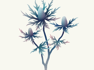 Flowers digital illustration