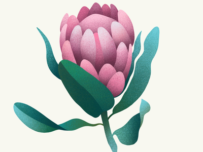 Flower digital illustration