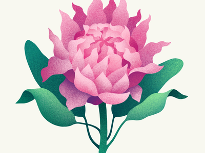 Flower digital illustration flower