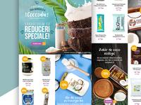 Coconut Newsletter