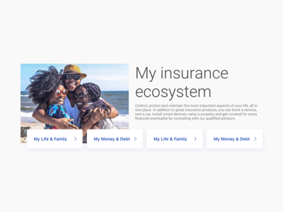 Insurance promotion component