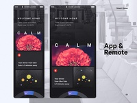 Smart Home – App & Remote