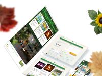 Park web mock behance 02 separe