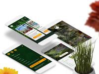 Park web mock behance 03 separe