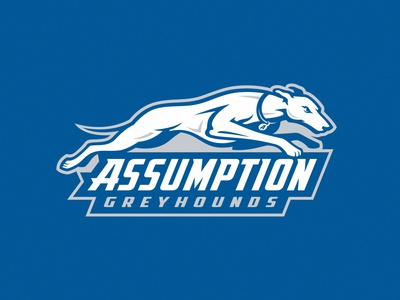 Assumption Greyhounds branding design team illustration identity college greyhounds assumption mascot dogs