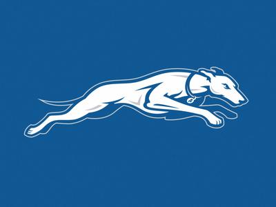 Dog greyhounds assumption dog sport branding illustration football design team logo esport mascot