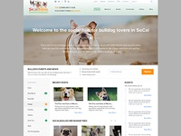Socali Website design