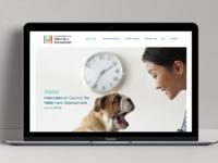 Icva website