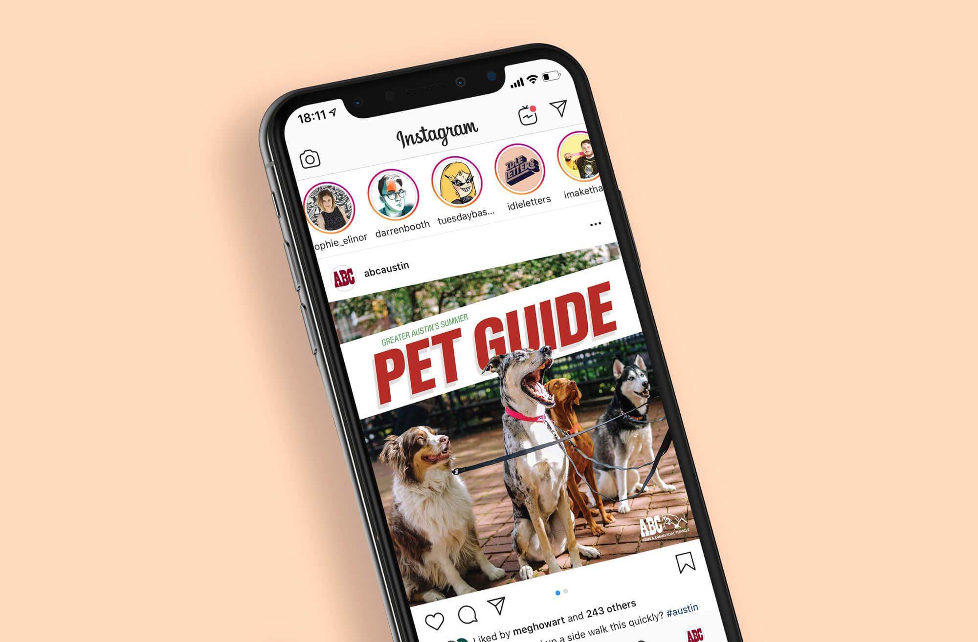 Pet guide instagram web