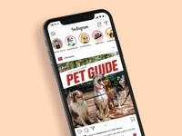 Pet guide instagram web