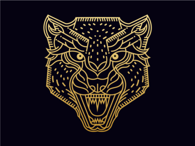 Luxurious Cheetah