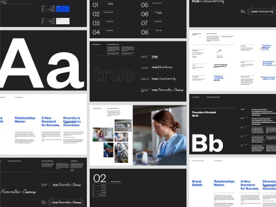 True Ventures Guidelines typography venture capital web logo guidelines art direction design system design brand brand identity branding