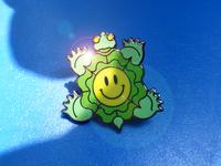 Turtle of Joy