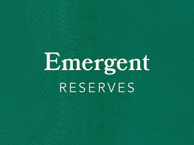 Emergent Reserves Logo techlogo fintech branding fintech logo fintech