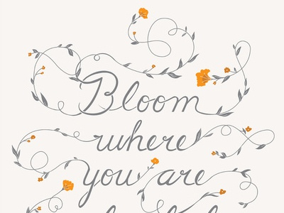 Bloom typography poster illustration