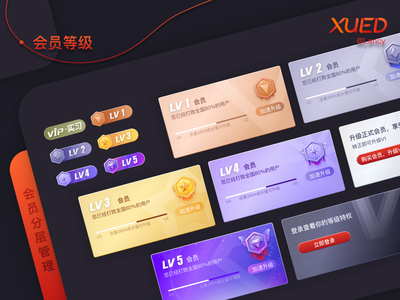 会员等级卡片 design icon vip