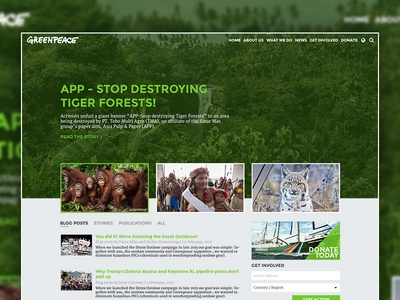 GreenPeace Homepage Rethink green concept redesign rethink greenpeace