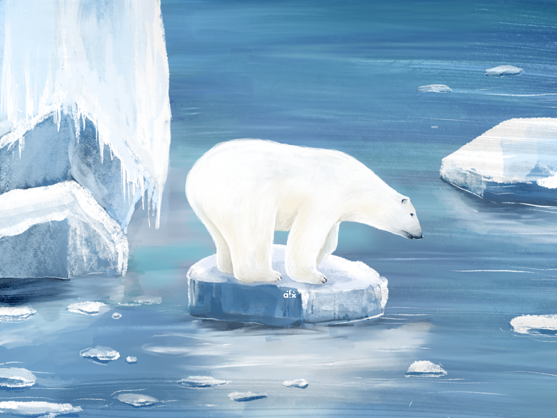 A R C T I C globalwarming nature glaciers drawing antarctic white animals procreate sketch design illustration ice arctic polar bear endangeredspecies endangered