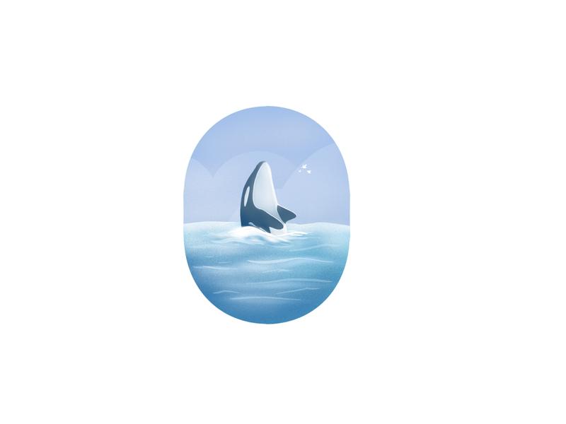 Orca (Killer Whale)_36daysoftype illustration logo 2d icon 36daysoftype minimal typography type orca whale creative art design
