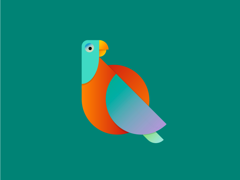 Q is for quetzal vector typography animal minimal lettering illustration graphic digital design vibrant 36daysoftype