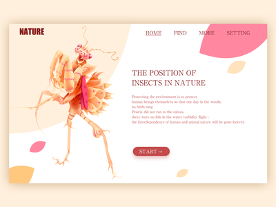 Nature branding web design icon vector illustration