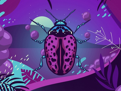insect 03 colors illustration colorful insects insect