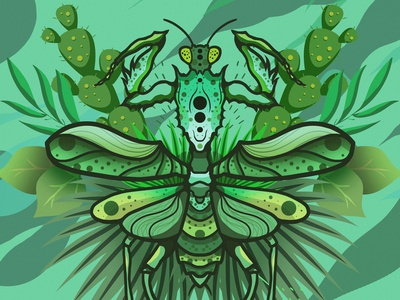 insect 04 insect colors colorful illustration