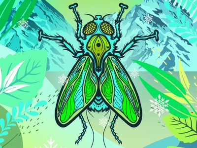 Insect 05 photoshop fly colorful illustration