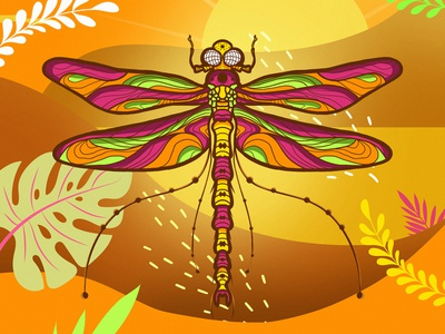 insect_06 design insect colors illustration