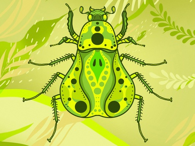insect_07 colorful colors insect illustration