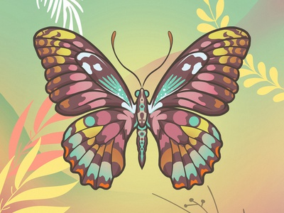 Insect_09 colors colorful insect illustration