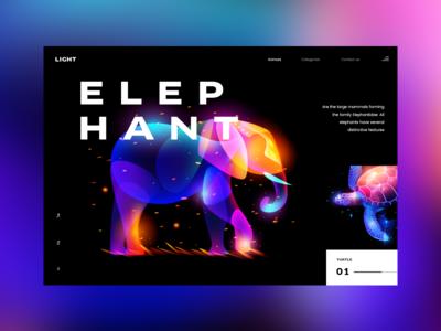 Animal lights: Elephant