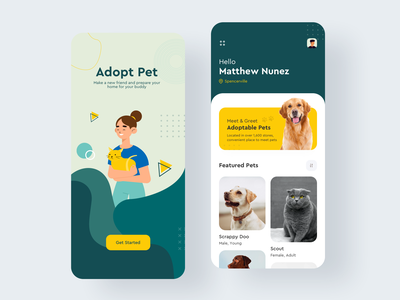 Pet Adopt App card clean typogaphy minimal layout vector adopt pet art mobile ios ux colors illustration flat app design ui