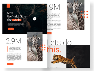Landing Page. Daily UI #003 ux design web website concept typography orange wild animal wildlife ui. ui concept landing page figma