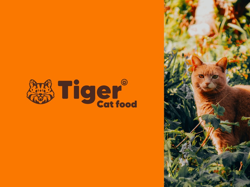✳ Tiger cat food - concept ✳ mascot character font graphicdesign identity food orange cat logotype logo mark brandidentity branding pet letter typography illustration graphisme work design