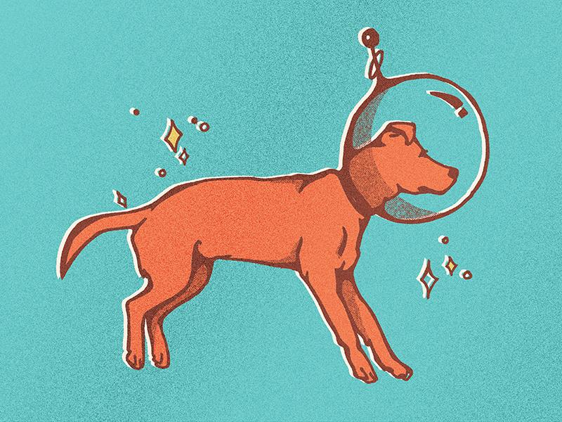 Astronaut Doggo cone of shame astronaut puppy space dog puppy astronaut space vintage retro