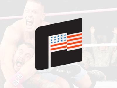 WWE: John Cena Licensing Art